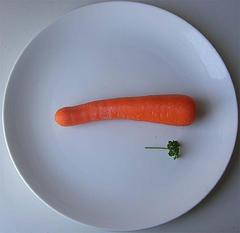 Diätenwahnsinn versus gesunde Mischkost